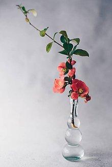 Grafika - Skrotená divá ruža - 8092983_
