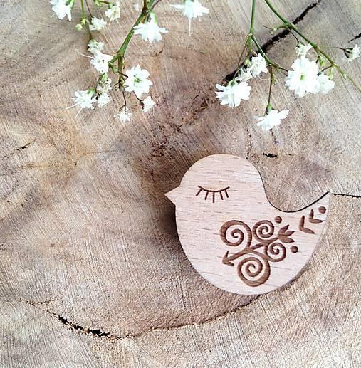 Odznak Vtáčik Čičmany