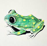 Kresby - Žabka s bodkami - farebná - 8105663_