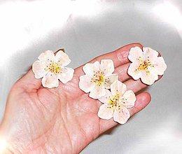 Ozdoby do vlasov - lel,kvetinové sponky - 8110367_