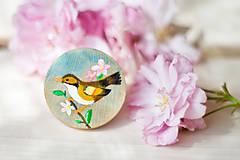 Odznaky/Brošne - Ručně malovaná brož s hnědým ptáčkem - 8116535_