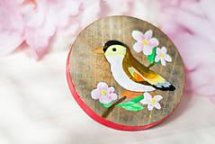Odznaky/Brošne - Ručně malovaná brož s ptáčkem - 8116561_