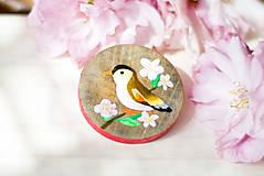 Odznaky/Brošne - Ručně malovaná brož s ptáčkem - 8116562_