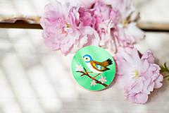 Odznaky/Brošne - Ručně malovaná brož s ptáčkem v zelené - 8116575_