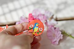 Odznaky/Brošne - Ručně malovaná brož s ptáčkem v meruňkové - 8116597_