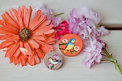 Odznaky/Brošne - Ručně malovaná brož s ptáčkem v meruňkové - 8116599_