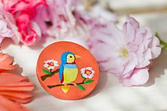 Odznaky/Brošne - Ručně malovaná brož s ptáčkem v meruňkové - 8116600_