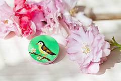 Odznaky/Brošne - Ručně malovaná brož s ptáčkem v zelené - mini - 8116609_