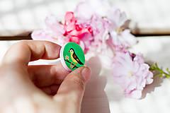 Odznaky/Brošne - Ručně malovaná brož s ptáčkem v zelené - mini - 8116610_