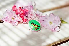 Odznaky/Brošne - Ručně malovaná brož s ptáčkem v zelené - mini - 8116611_