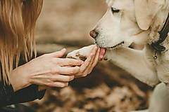 Pre zvieratká - Ochranný krém na psie labky - 8122575_