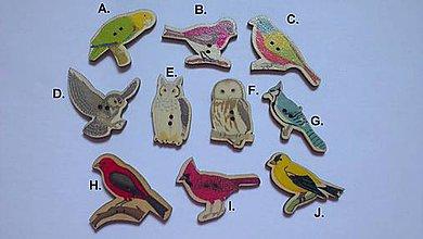 Galantéria - Drevený gombík Vtáčik - 10 druhov - 8133662_