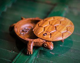 Krabičky - Drevená korytnačka pokladnička   Wooden turtle jewelry box // ring dish - 8145533_