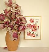 Obrazy - Maľovaný, zarámovaný obraz Magnólia, akvarel + ceruzka - 8156760_