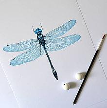 Kresby - Vážka - svetlo modrá (A4) - 8156798_