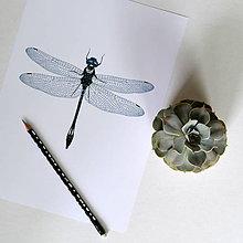 Kresby - Vážka modrá (A3) - 8157334_