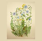 - Maľovaný, zarámovaný obraz ľan a lúčne kvety II, akvarel - 8183400_