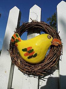 Dekorácie - Papagáj zahniezdil - 8187832_