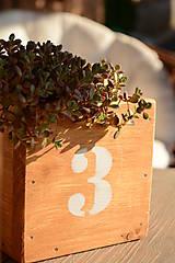 Nábytok - Drevená malá bednička - 8193839_