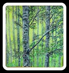 Obrazy - Ranné svitanie v lese - 8191844_
