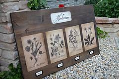 Tabuľky - Tabuľa Herbarium - 8213126_