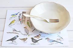 - Detské umývateľné prestieranie Vtáčiky - 8223541_