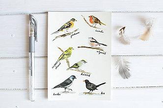 Papiernictvo - Pohľadnica Vtáčiky I - 8222718_