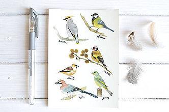 Papiernictvo - Pohľadnica Vtáčiky II - 8222730_
