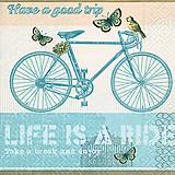 - bicykel - 8233221_
