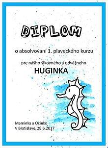 Papiernictvo - Diplom \