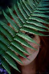 Fotografie - Tajomstvá lesa - 8249285_