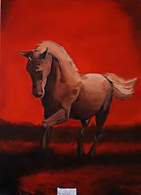 Obrazy - Obraz - Kôň na červenej pláni - 8253560_