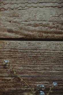 Grafika - Na drevo maľované - 8272228_