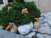 Dekorácie - Vtáčiky - 8277994_