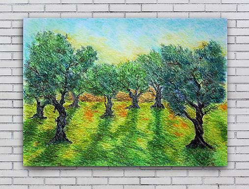 Olivový sad