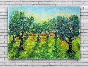 Obrazy - Olivový sad - 8280982_