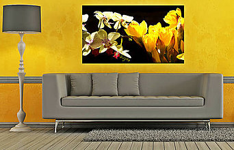 Fotografie - Narcisy a orchidea - 8285315_