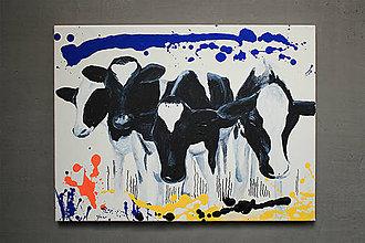Obrazy - Obraz na plátne kravy - 8293389_