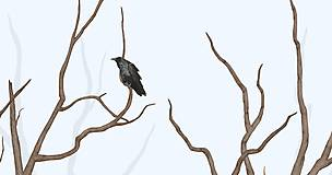 Grafika - RAVEN IN FOREST - BLUE - 8292446_