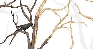Grafika - RAVEN IN FOREST - 8292535_