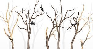 Grafika - RAVEN IN FOREST - 8292536_
