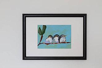 Obrazy - Birds II. - 8310559_