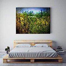 Obrazy - LETO fotoplátno 70x50 alebo 60x60 cm - 8323304_