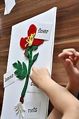 Hračky - Časti kvetu - 8340429_