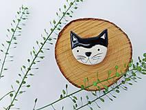 Odznaky/Brošne - brošňa mačka - 8361935_