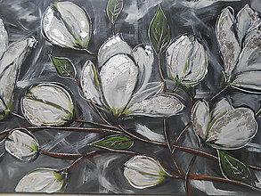 Obrazy - Magnólia v kvete - 8375618_