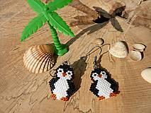 Náušnice - ... tučniaky z Madagaskaru - 8403498_