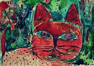 Obrazy - Hanba mačky - 8406071_