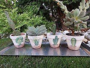 Nádoby - na kaktusy - 8407749_
