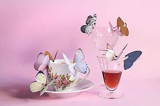 Dekorácie - Svadobné dekorácie / Na krídlach motýľov - 8414873_